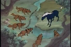 wolves circle
