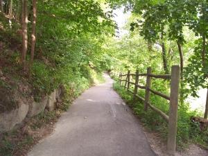 path-3