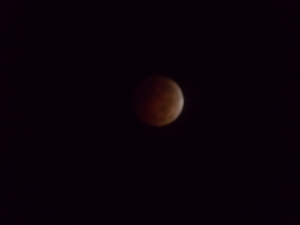 A later shot of the Blood Moon. Photo copyright by David Mathes, 2014.