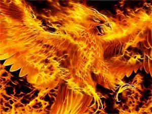 phoenix-fire-blaze-heat-gmym_093836